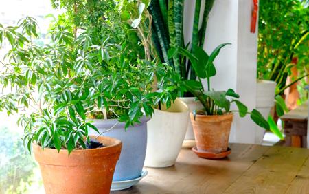 air-filtration-fresh-air-in-home